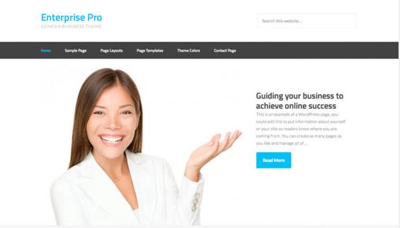 Hjemmeside Design - Waimea Enterprise