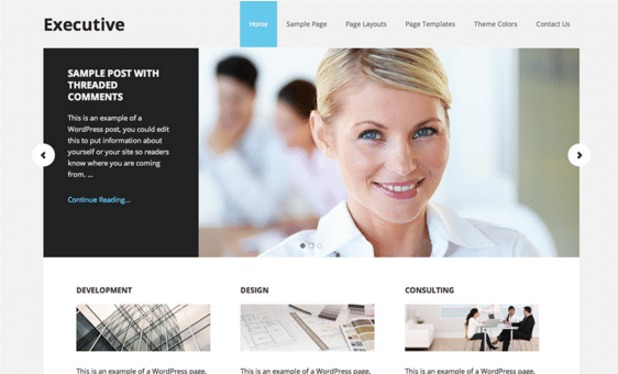 Hjemmeside Design - Waimea Executive Pro