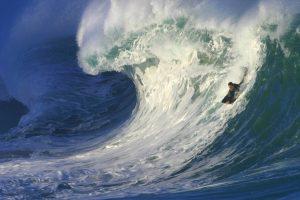 Waimea Beach bølger