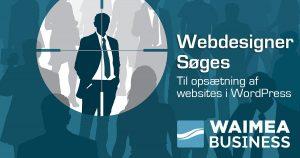Wamea Job - Webdesigner