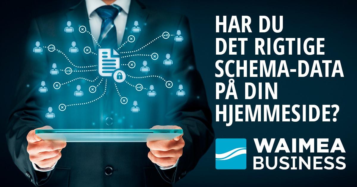 waimea-business-schema-data
